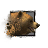 Juvenile Brown Bear.png