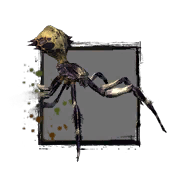 Juvenile Jungle Spider.png